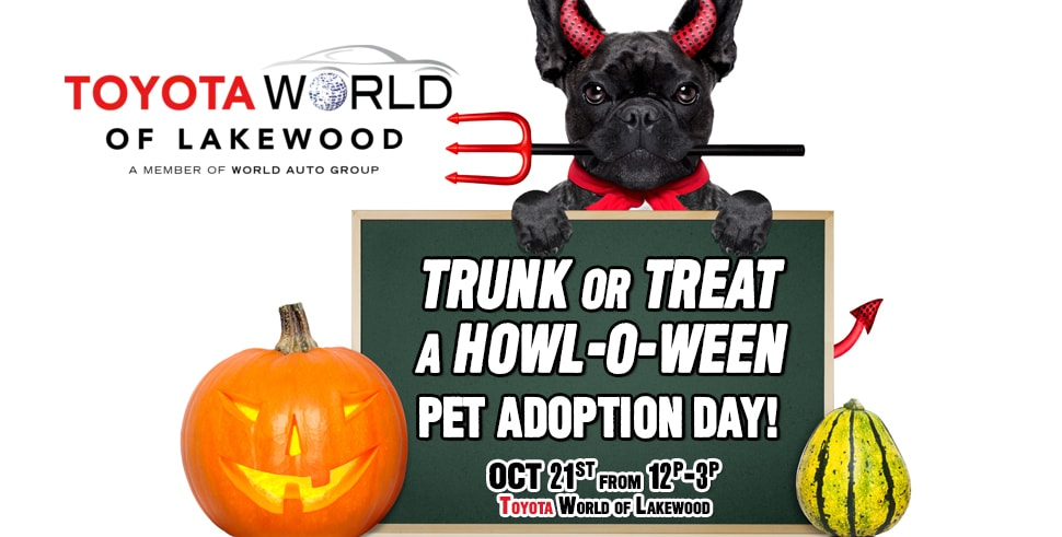 Marvelous Trunk Or Treat A Howl O Ween Pet Adoption Day At Toyota World Of Lakewood